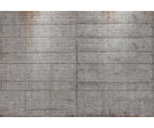 Concrete Blocks 8-938 Wall Mural