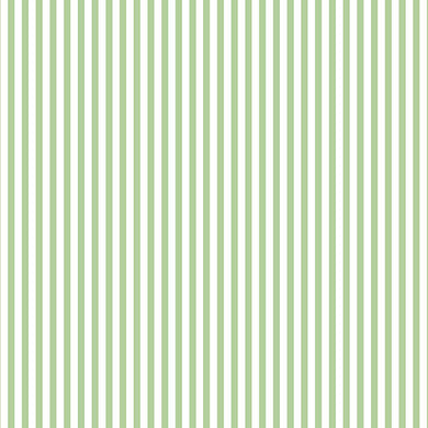 Green White Striped FK34409 Wallpaper