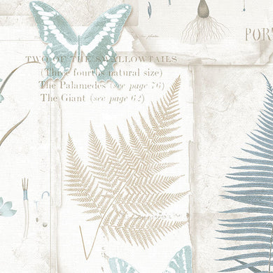 Blue Off White Insects Leaves FK34414 Wallpaper
