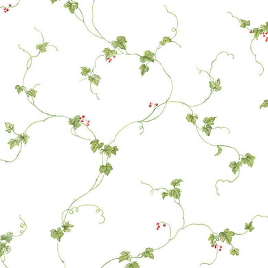 Red Green Berries Trail FK34438 Wallpaper