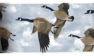 Glen Loates Canadian Goose GL76374 Wallpaper Border