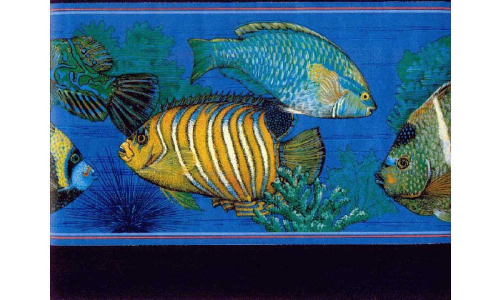 Fish b673013 Wallpaper Border