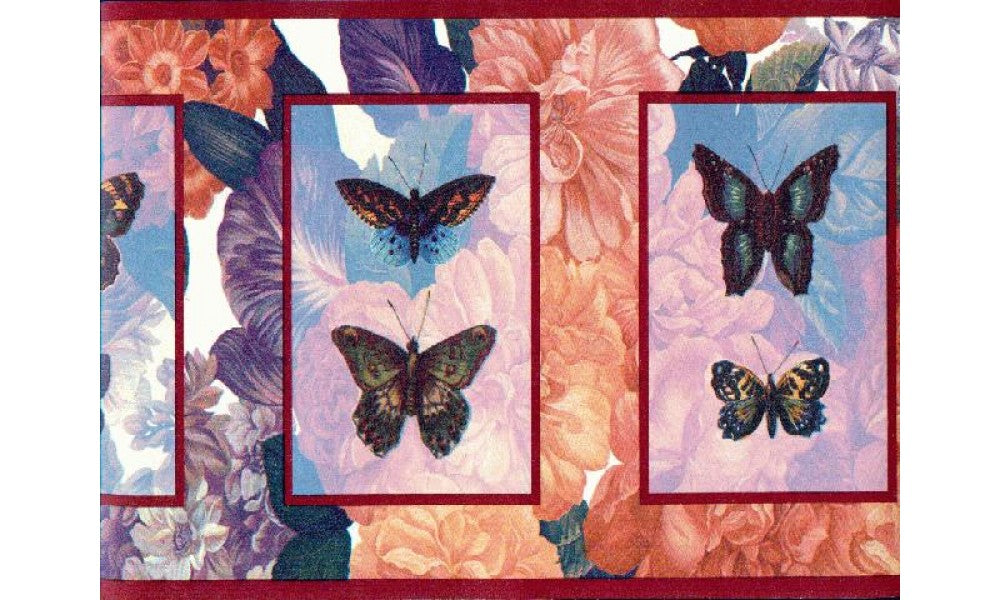 Butterfly b3063 Wallpaper Border