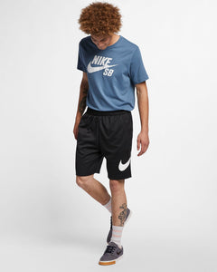 Nike SB Sunday Dri Fit Shorts