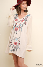 Isa Floral Embroidered V-Neck Dress
