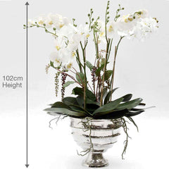 Bamburgh Silk Orchid, White in Silver UrnBamburgh Silk Orchid, White in Silver Urn