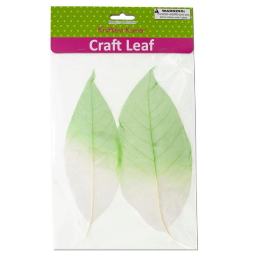 Dyed Natural Craft Leaves - Wholesale Case PACK of 80
