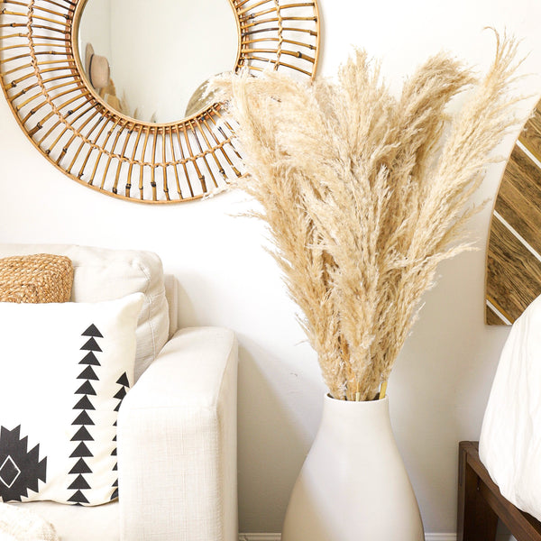 Pampas Grass Set Of 6