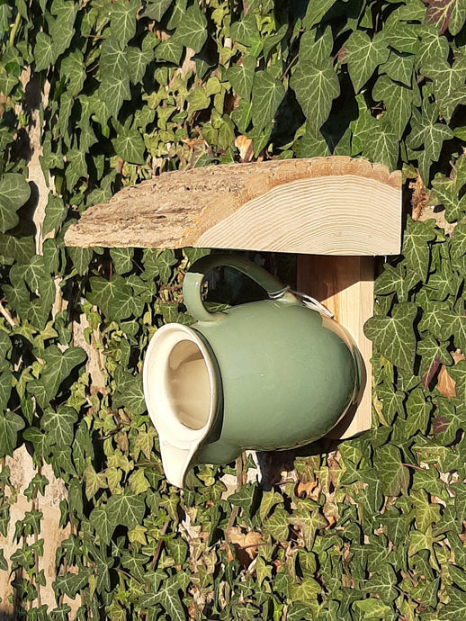 Milk / Cream Jug Bird Feeder /Nest Box