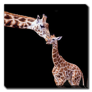 "Lu Art ""Giraffe Kisses"""