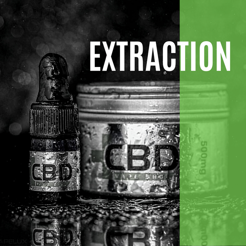 CBD Extraction