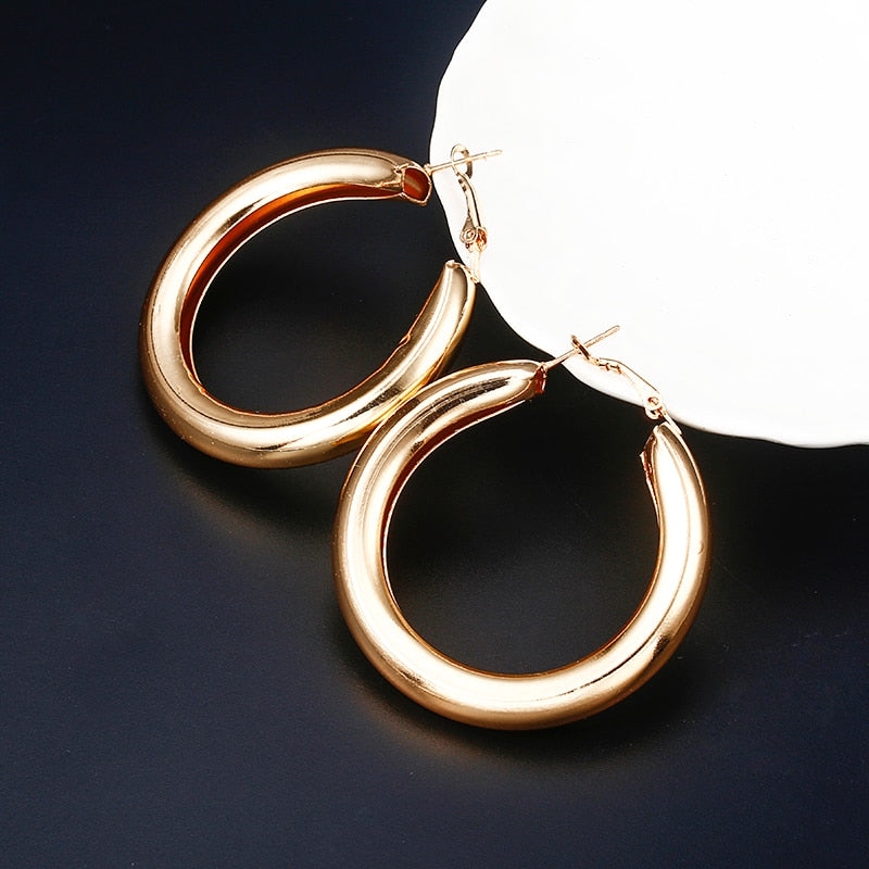 Gold Silver Hoops Earrings Minimalist Thick Tube Round Circle Rings Earrings