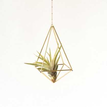 Geometric Air Plant Holder — Octahedron Himmeli No02 Himmeli Fuxigold