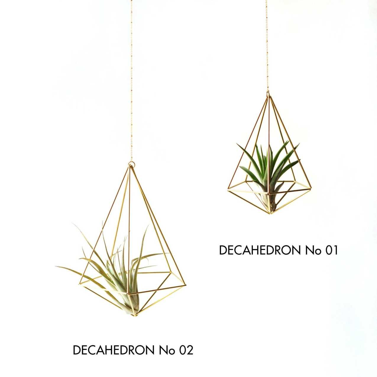 Geometric AirPlant Holder - Decahedron Himmeli 01 Himmeli Fuxigold
