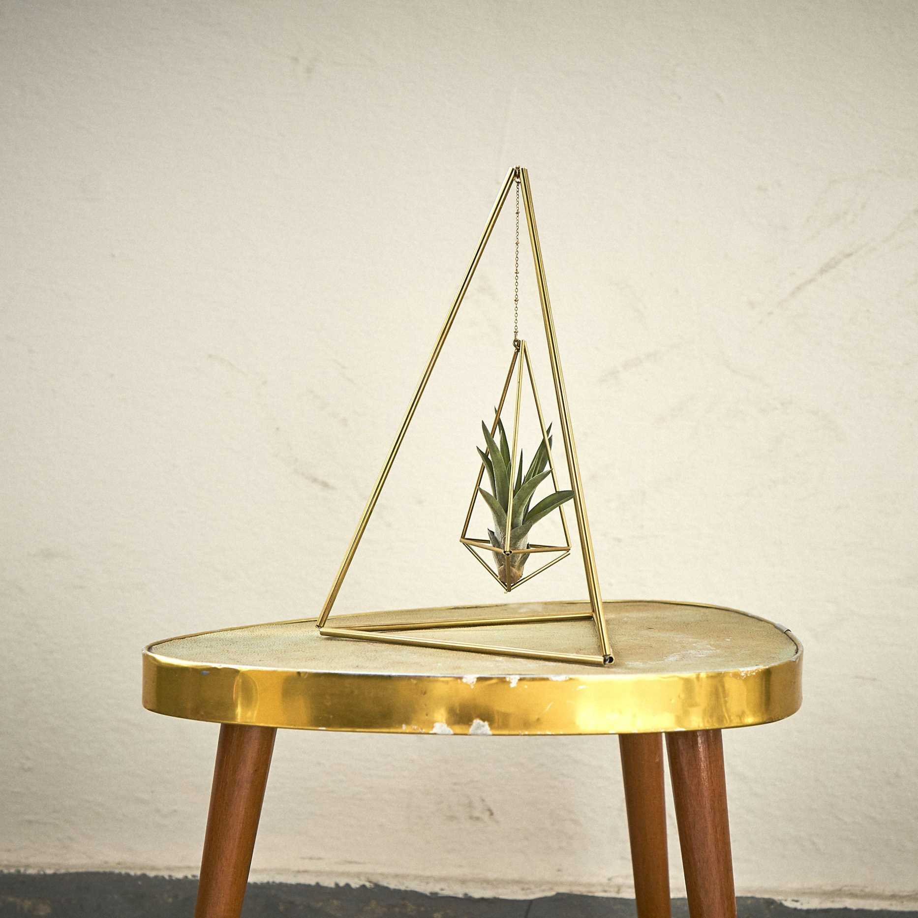 Gold Air Plant Holder - Tetrahedron Himmeli 02 Himmeli Fuxigold