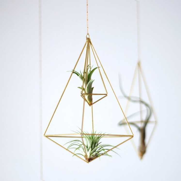 Hanging Air Plant Holder — Octahedron Double Himmeli No.02 Himmeli Fuxigold