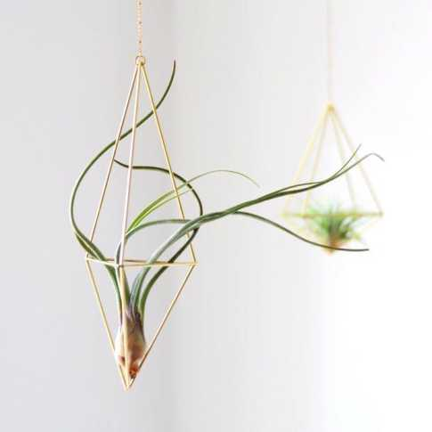 Hexahedron Himmeli 03 - Geometric Air Plant Holder Himmeli Fuxigold