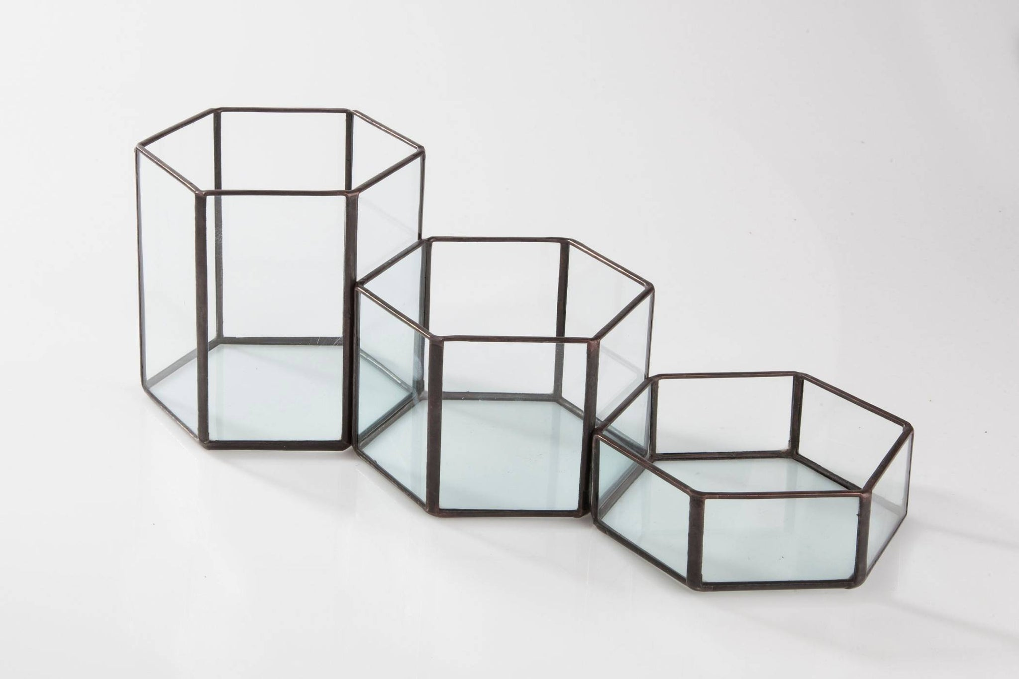 Modular Hexagon Terrariums (Set of 3) Planters Glass House Studios