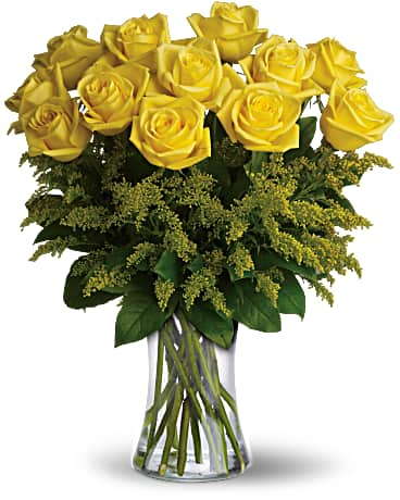 One dozen yellow roses - a symbol of friendship - are gathered with eye-catching yellow solidago and rich green salal into a graceful glass vase.  Includes: Yellow roses, soligago, salal Vase Free message card