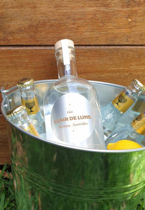 Hunters Hill Food and Wine Festival - Gin Bucket