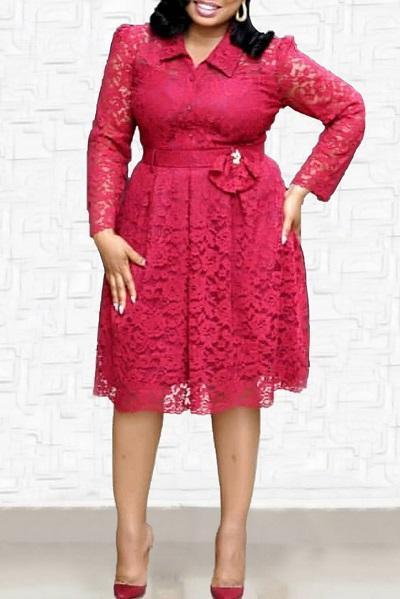 Turndown Collar Lace Midi Dress