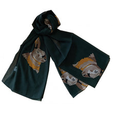 Load image into Gallery viewer, Chiffon Scarf