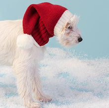 Load image into Gallery viewer, Pet Santa Snood
