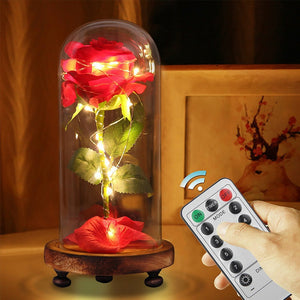 Remote Control LED Beauty Rose and Beast Battery Powered Red Flower String Light Lamp Romantic Valentine's Day Birthday Gift
