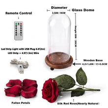 Load image into Gallery viewer, Remote Control LED Beauty Rose and Beast Battery Powered Red Flower String Light Lamp Romantic Valentine's Day Birthday Gift