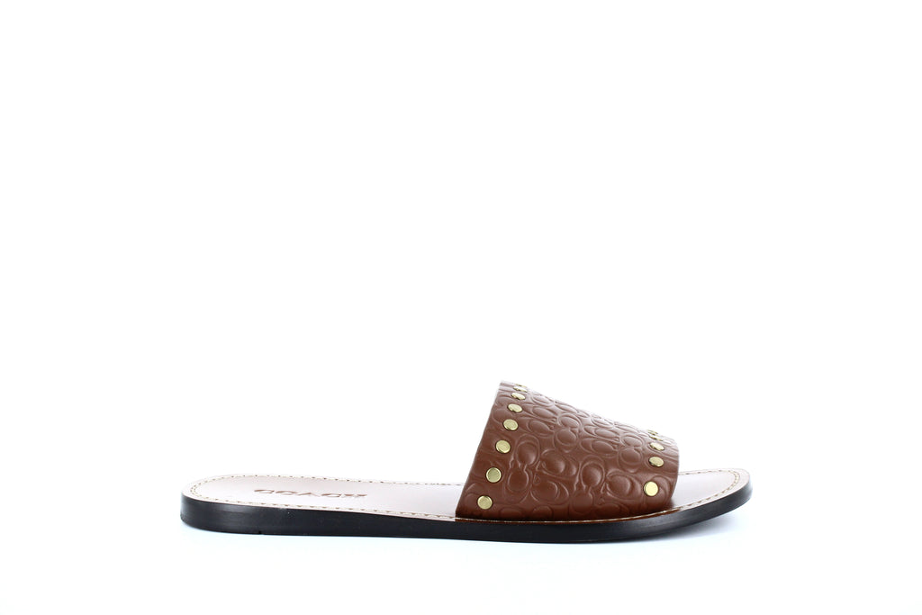 Yieldings Discount Shoes Store's Slide Sig Leather Sandals by Coach in Lion