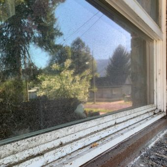 Window Cleaning Dirty Window Before