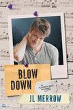 Blow Down (The Plumber's Mate Mysteries, #4)