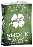 Shock & Awe (A Sidewinder Story) - Inventory Clearance Paperback!