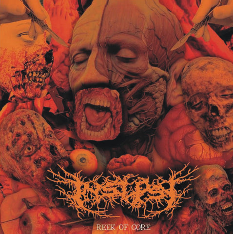 INSEPSY - Reek Of Gore CD