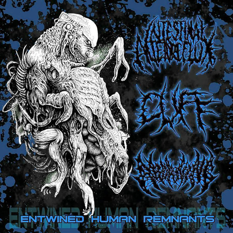 INTESTINAL ALIEN REFLUX / CUFF / ABORNING - Entwined Human Remnants CD