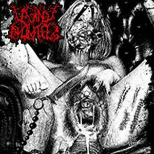VAGINAL ANOMALIES - Two Maniac Perverts Vomiting Shit CD