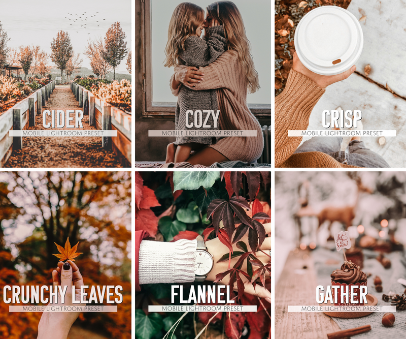 Autumn Preset Collection