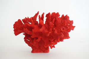 CORAL RESIN FIGURE