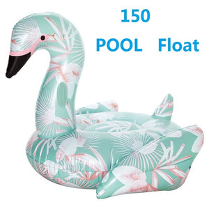 Giant Swan Float Pool Party