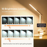 LITOM LED Desk Lamp, Eye-Caring Table Lamps with Night Light, Office Lamp with 10 Brightness