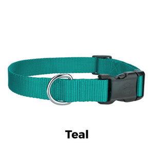 Custom Dog Collars for Big Dogs