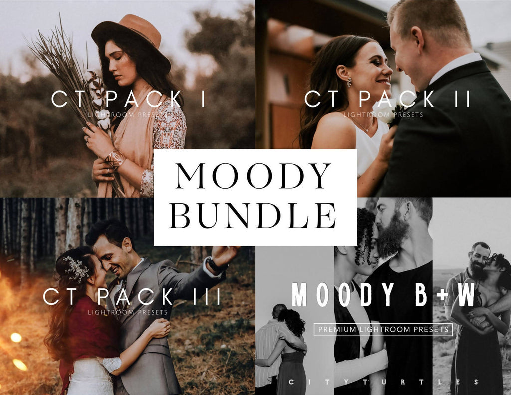MOODY BUNDLE - Portrait Lightroom Presets for Desktop & Mobile - One Click Photographer Editing Tools