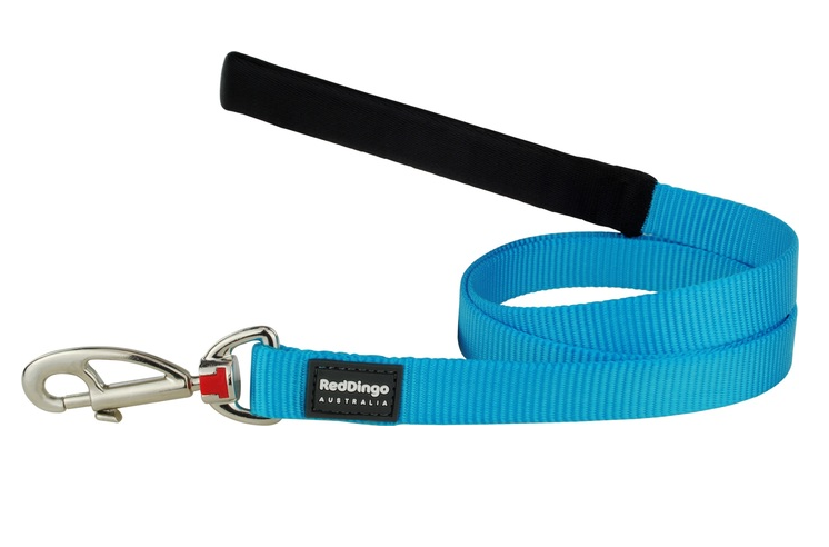Red Dingo Plain Turquoise 1.2m Dog Lead
