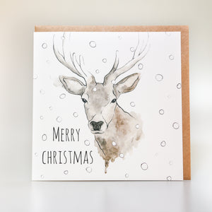 Highland Stag Christmas Card