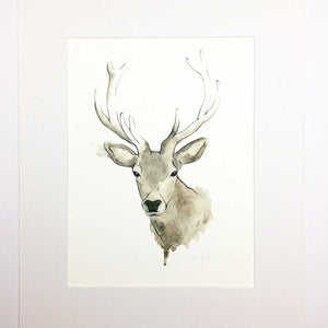 Scottish Highland Stag Art Print | Artist, Clare Baird