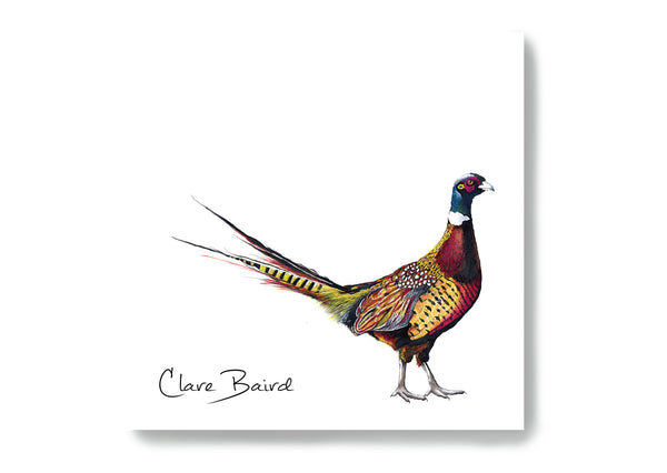 Pheasant Sticky Notes