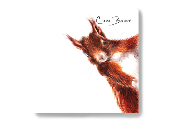 Red Squirrel Sticky Notes