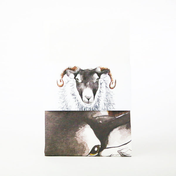 Ewe Sheep tea towel gift | Clare Baird