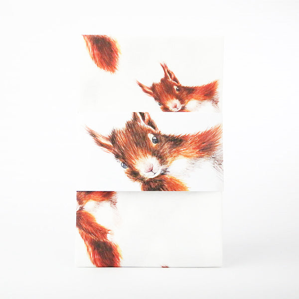 Red Squirrel Patterned Tea Towel