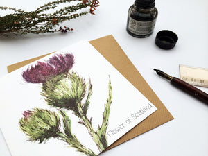scottish thistle flower card